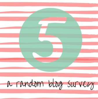 FIVE-A-Random-Blog-Survey_thumb